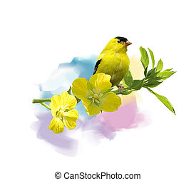 American Goldfinch watercolor - Digital Painting of American...