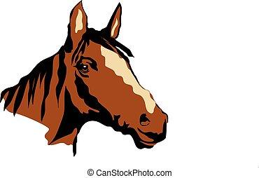 American Horse Head sketch