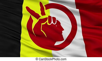 American Movement Indian Flag Closeup Seamless Loop