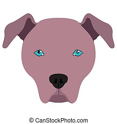 American pit bull terrier avatar - Isolated avatar of an...