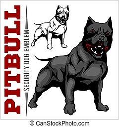 American Pit Bull Terrier, Pitbull. - American Pit Bull...