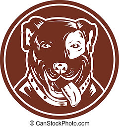 American Pit bull Terrier set inside a circle - illustration...