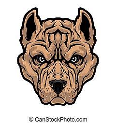 American Pitbull Terrier dog head.