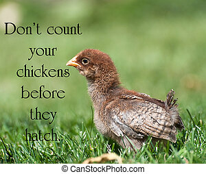 "American proverb ""Don't count your chickens before they..."