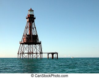Photographed when on my local fishing trip at Key West, Florida.
