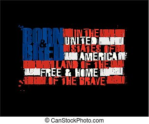 American Text Flag - Land of the Free Home of the Brave Positive