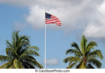 American Tropics - American Flag in sky between two palm...