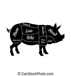 Pork or pig cuts. American US cuts of pork. Barbecue vector illustration. Pork meat cuts. Butcher pork cuts diagram. Butchers selection. Butcher shop