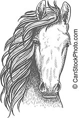 American wild west mustang sketch icon - Wild mustang...