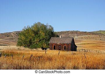 Deserted Farm with wheat gras land blue skys