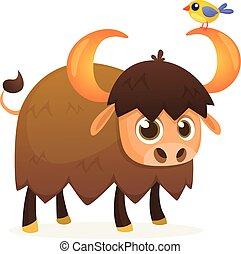 americano, cartone animato, toro