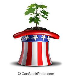 amerikaan, concept, groei
