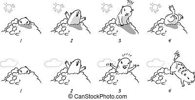 amerikai mormota, nap