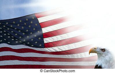 amerikan flagga, och, örn