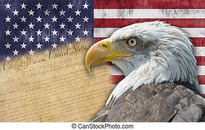 amerikan flagga, och, flintskallig örn