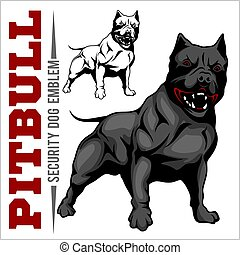 amerikanische , grube, terrier, pitbull., stier