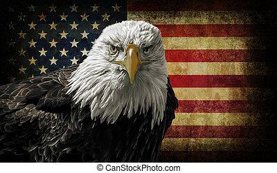 amerikanische , kahler adler, auf, grunge, fahne