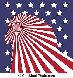 amerykańska bandera, łysy