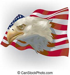 amerykańska bandera, i, łysy orzeł