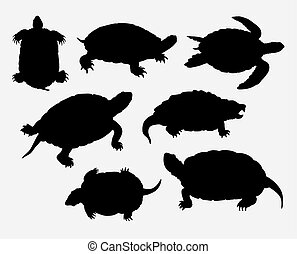 amfibie, schildpad, silhouette