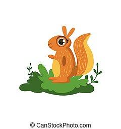 amical, forêt, animal, écureuil