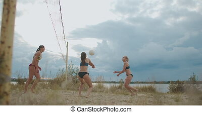 amical, sportives, femmes, professionnel, volley-ball, ...