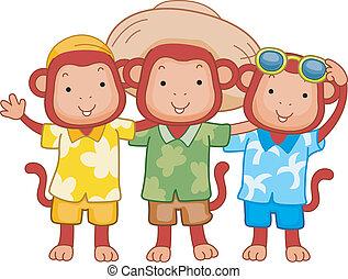 amici, scimmia