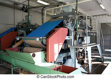 amidon, machinerie, pomme terre, production