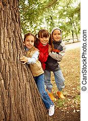 amigos, atrás, árbol
