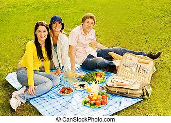 amigos, en, picnic