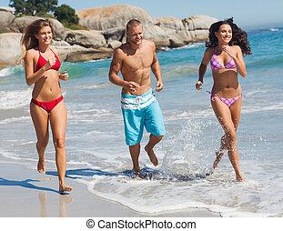 amigos, sacudindo, praia