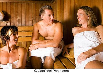 amigos, sauna