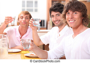 amigos, toasting., grupo