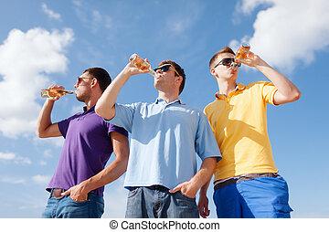 amis, bouteilles bière, groupe, mâle