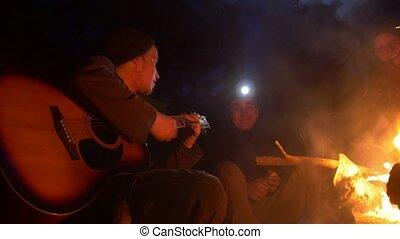 amis, jeune, guitare, bois, nuit, chant, jouer, feu, chansons