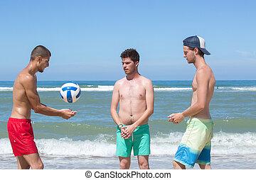 amis, joyeux, volley-ball, jouer