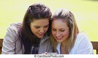 amis, numérique, regarder, sourire, appareil photo