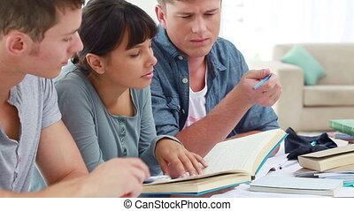 amis, sourire, étudier, ensemble