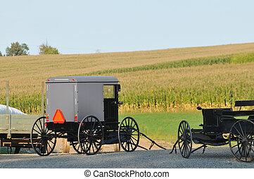 Amish buggies in Pennsylvania countryside