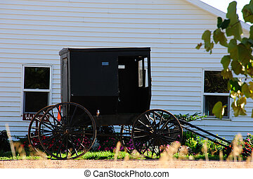 Amish Buggy in Wisconsin