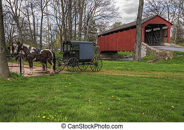 Amish Buggy Parked by Covered Bridge - Amish horses and...