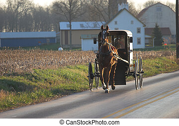 amish buggy - Amish horse and buggy, Chester County,...