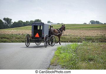 amish, buggy, voltas, um, canto, em, município lancaster,...