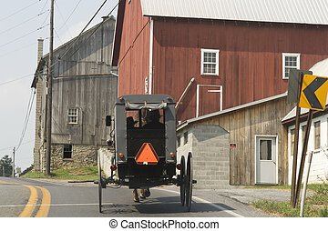 Amish buggy with two men with hats inside seen from behind