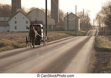 amish, caballo y calesa