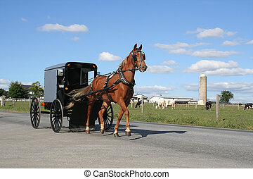 An Amish carriage in Lancaster County, Pennsylvania, USA.