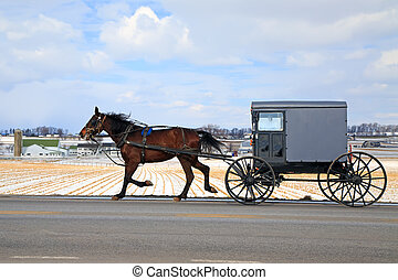 Amish Carriage in Winter - An Amish Carriage travels in snow...