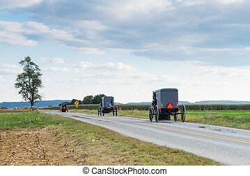 Amish Carriages in Lancaster County