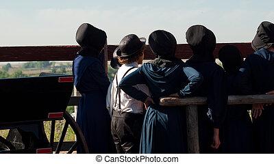 Amish Children - Amish children on the farm.
