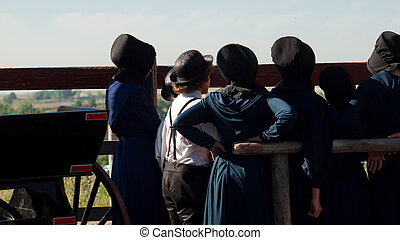 Amish Children - Amish children on the farm.